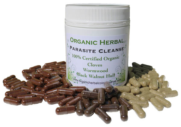 organic herbal parasite cleanse